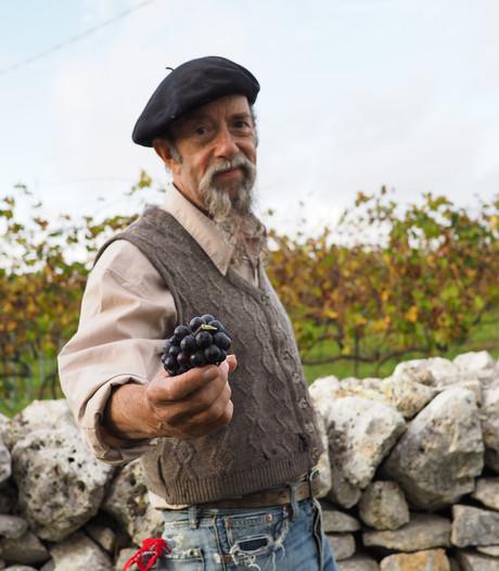 Ilja Gort: De Italiaanse wijn reflecteert ziel van het volk