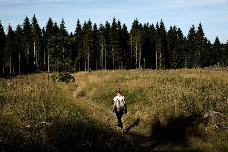 Verslaggever Sterre Lindhout trekt door de Harz. Beeld Daniël Rosenthal