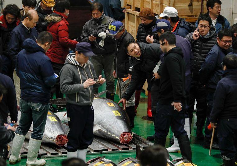 Handelaars verzamelen zich om de enorme tonijn van 278 kilo op de beroemde vismarkt in Tokyo in Japan. Beeld EPA