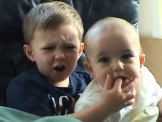 """""""Charlie bit my finger"""": een van de populairste video's aller tijden geveild voor 622.000 euro"""
