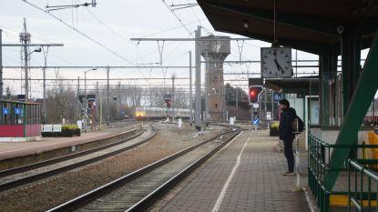Infrabel vernieuwt 10.000 dwarsliggers, 9 kilometer bovenleiding en 17.500 ton ballast tijdens grote spoorvernieuwingswerken in Denderleeuws station, NMBS legt vervangbussen in