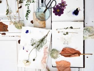 Geniet langer van je boeket: zo droog je zelf bloemen
