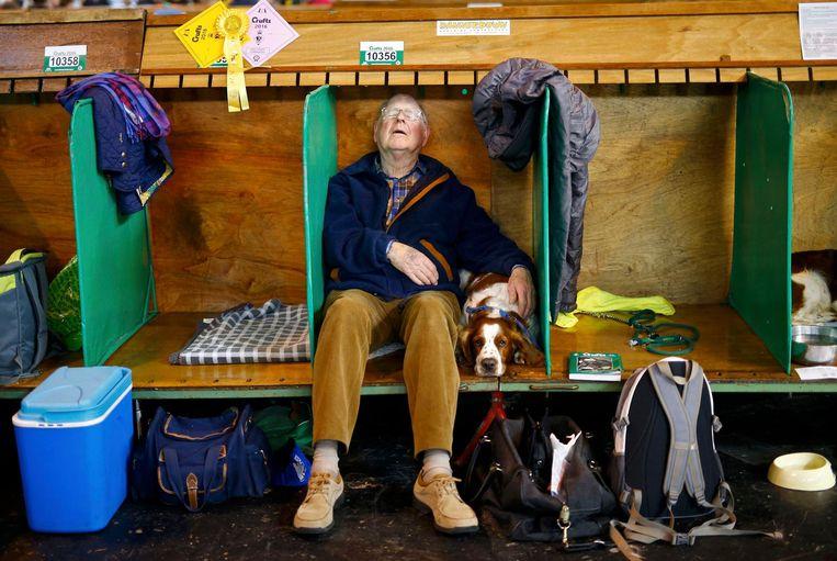 A man sleeps besides his Welsh Springer Spaniel during the second day of the Crufts Dog Show in Birmingham, Britain. REUTERS/Darren Staples LOSSE BESTANDEN, NIET (!) BEDOELD VOOR DE LAY-OUT VAN DE PAPIEREN KRANT, ENKEL TE GEBRUIKEN VOOR INTERNET LOSSE BESTANDEN ENKEL BEDOELD VOOR INTERNET, DUS NIET GEBRUIKEN VOOR DE LAYOUT VAN DE PAPIEREN KRANT. Beeld reuters