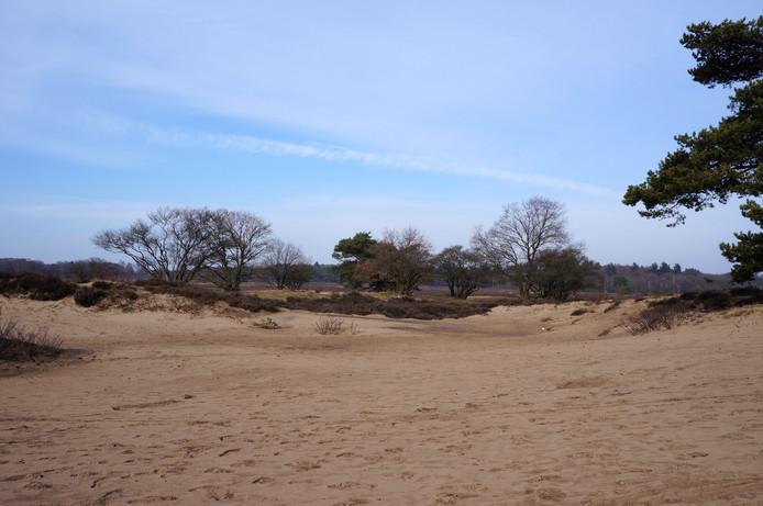 Het Goois Natuurreservaat, foto ter illustratie