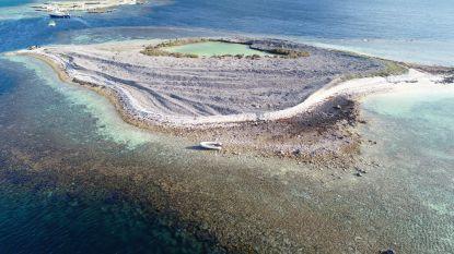 Zeehond belet drugssmokkelaars te vluchten van eilandje waar ze lading van 1 ton verstopten