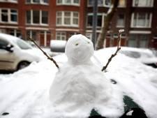 Wie maakt de mooiste sneeuwpop van Terborg?