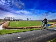 De polders om Dordrecht zijn niet bijzonder genoeg voor een monumentenstatus