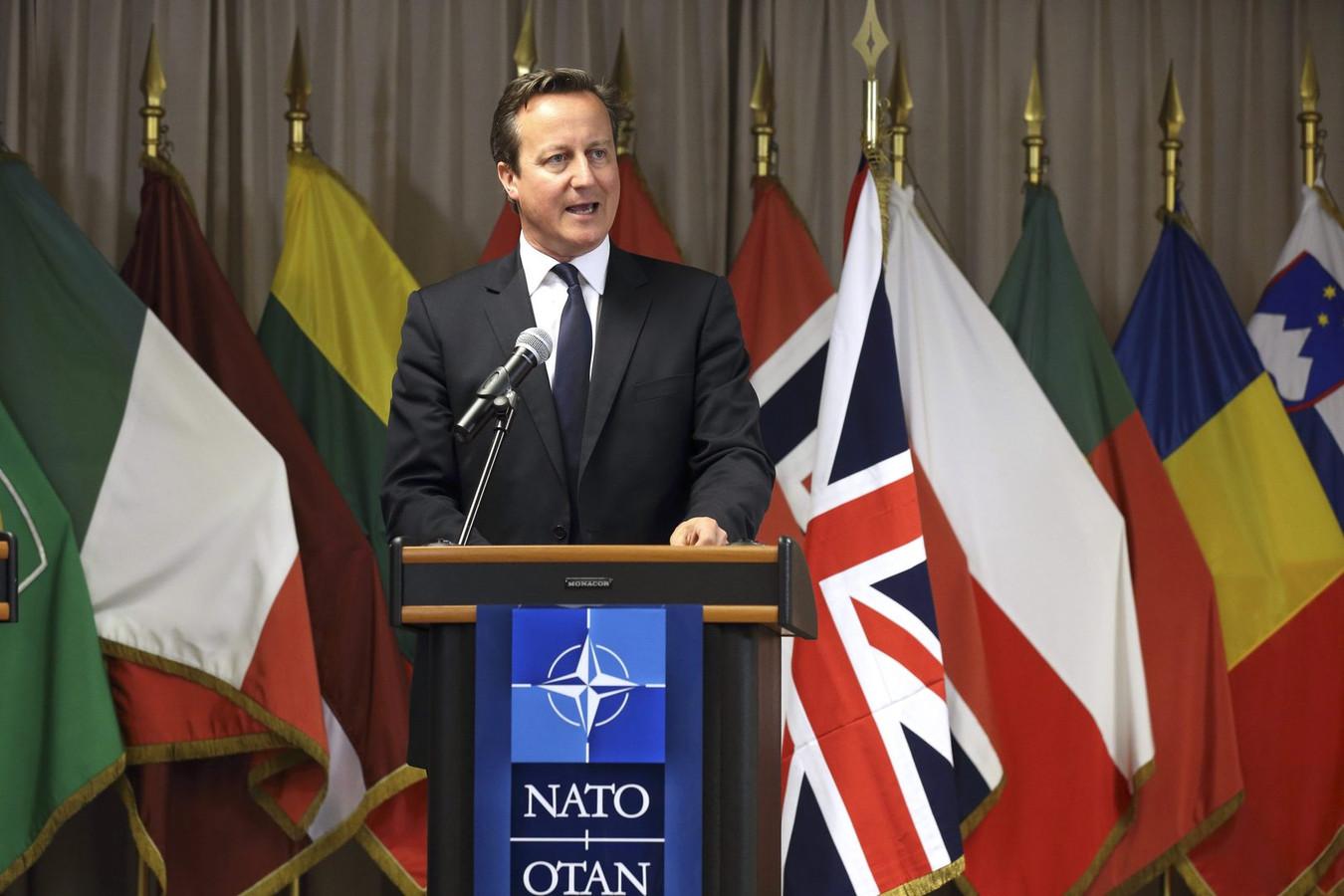 De Britse premier David Cameron.