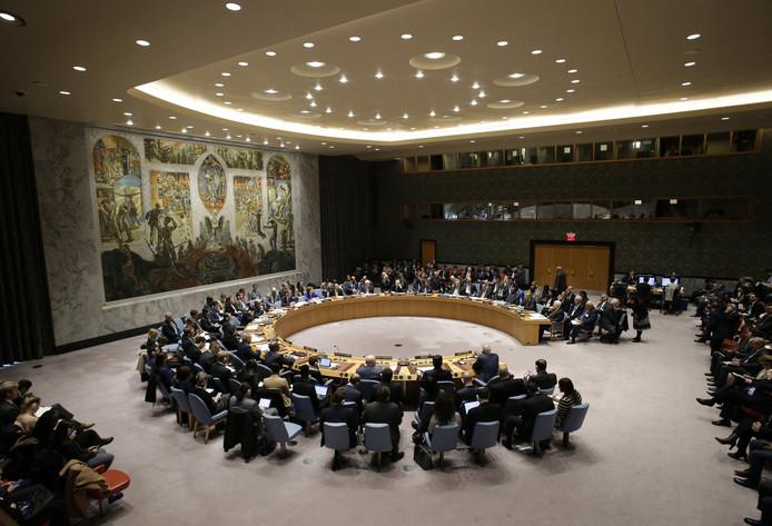 La Belgique a pris la présidence tournante du Conseil de sécurité de l'ONU pour un mois.