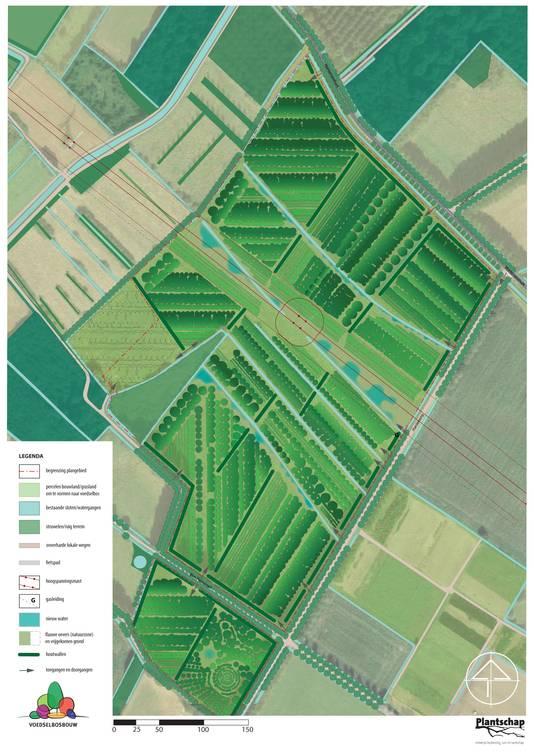 Aan Hardekamp in Schijndel ligt zestien hectare voedselbos.
