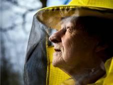 De 5G-mast heeft vele vijanden: 'Mobiele straling is slecht voor bijen'