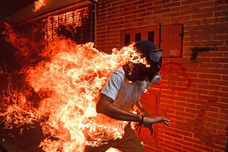 Winnaar van de World Press Photo. Beeld AFP