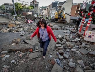 N-VA dient formele vraag in voor parlementaire onderzoekscommissie naar overstromingen