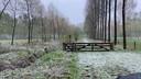 Sneeuw in Heeswijk.