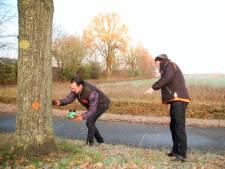 Bomen mogen nog even blijven na 'stippenactie' in Middelbeers