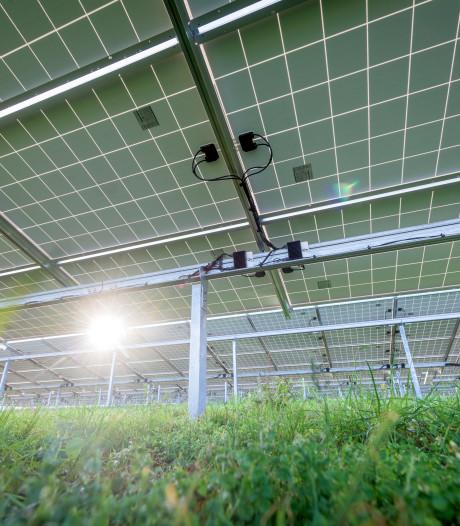 Plannen voor 27 zonneparken in Berkelland, maar 'een paar windmolens zou helpen'