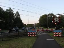 Ontsnapte kalveren zorgen voor problemen op het spoor tussen Deventer en Rijssen