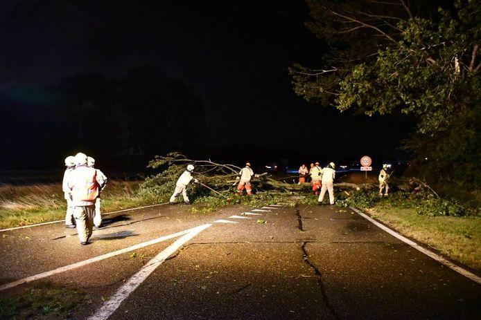 Een boom viel over de afrit van het tankstation langs de A58 bij 's-Heer Arendskerke. De brandweer haalde 'm weg.