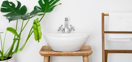 'Wie zijn kamerplanten liefheeft, zet ze in de badkamer'