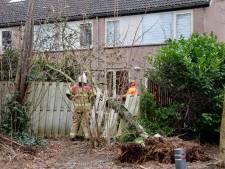 Schade door de storm: wat kun je claimen bij de verzekeraar en wat valt onder eigen risico?