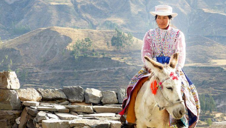Onderweg naar Colca Canyon, Peru. Beeld