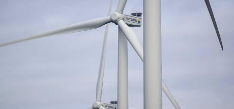 Wespendief zorgt er voor dat tot 2030 geen windturbines worden geplaatst in de gemeente Renkum