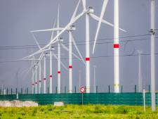 Schepen Franky Demon wil in beroep tegen de net vergunde windmolen aan Lodewijk Coiseaukaai