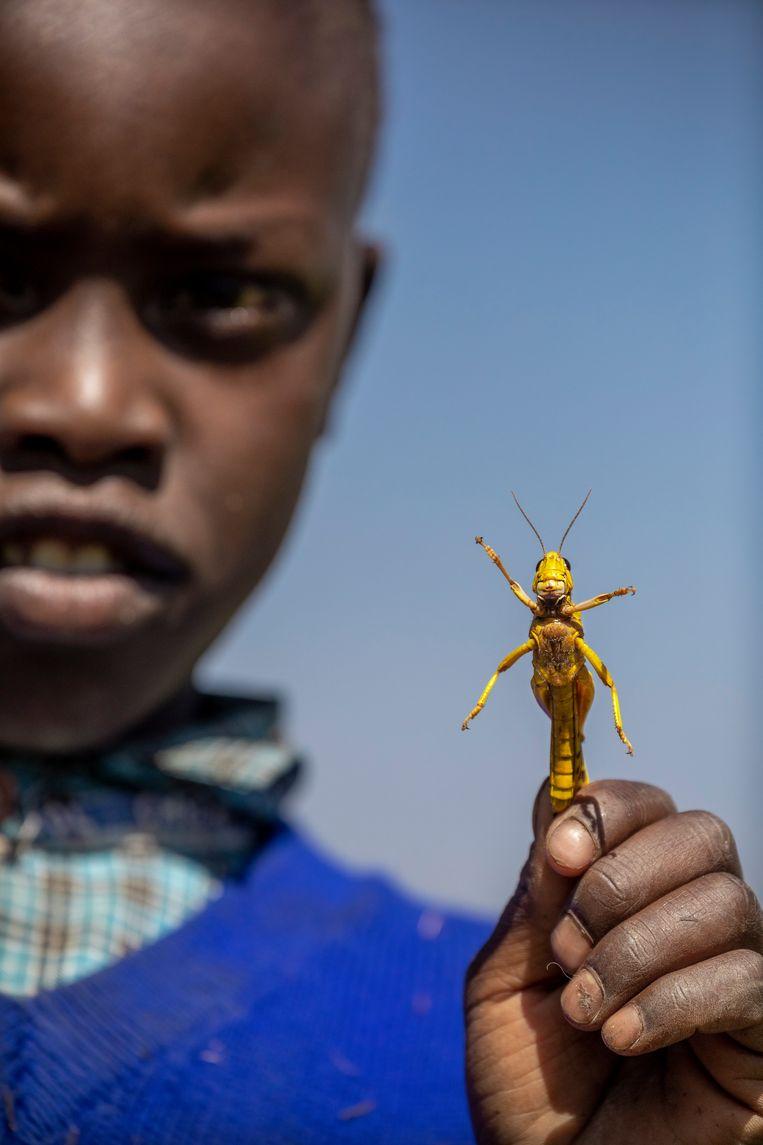 Een jongen toont een gevangen sprinkhaan.  Beeld Sven Torfinn / de Volkskrant