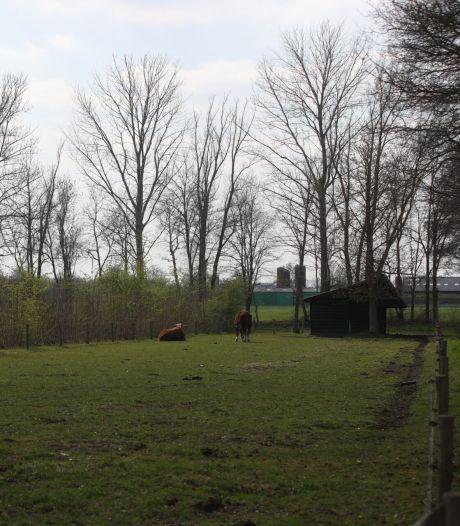 Familie Wilgers geeft grond boomkwekerij in Deurne 'terug' aan de natuur