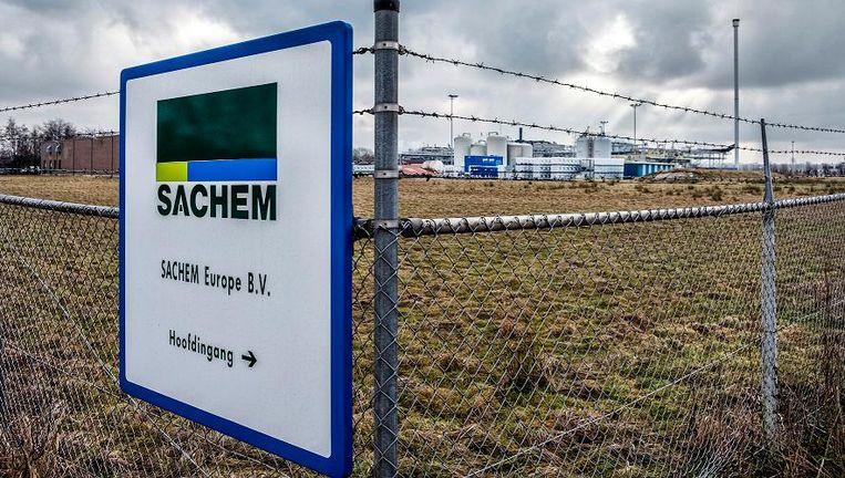 Chemiereus Sachem in Zaltbommel. Beeld Raymond Rutting