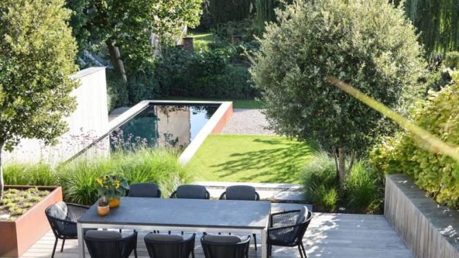 Je tuin gezelliger maken? Deze 7 tips helpen je op weg