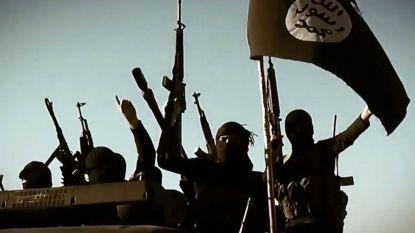 """VS zetten druk op België: """"Haal IS-strijders weg uit Syrië"""""""