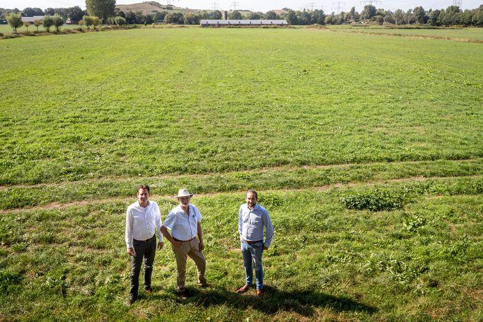 Varkensboeren Henk Verhoeven met zijn zonen Paul (links) en Bob op hun grond waar in Geldrop-Mierlo een zonnepark zal komen.