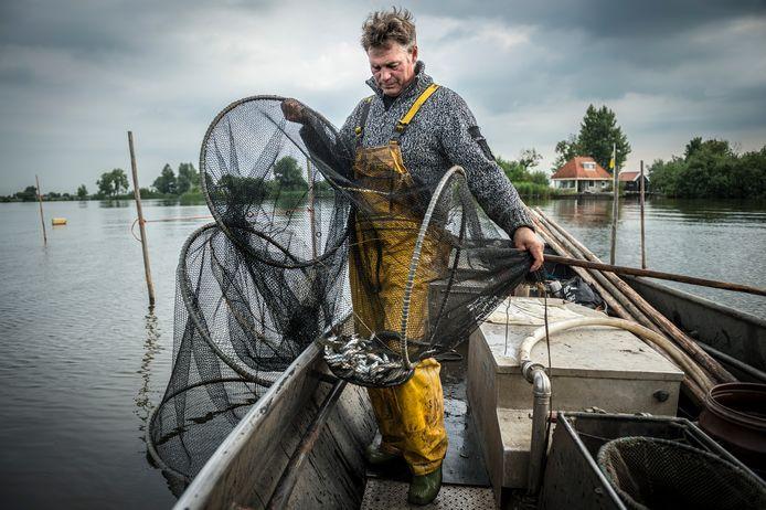 Hollandse Hoogte