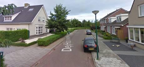 Nieuwe woonwijk voor De Moer: 'maar landelijke karakter blijft'