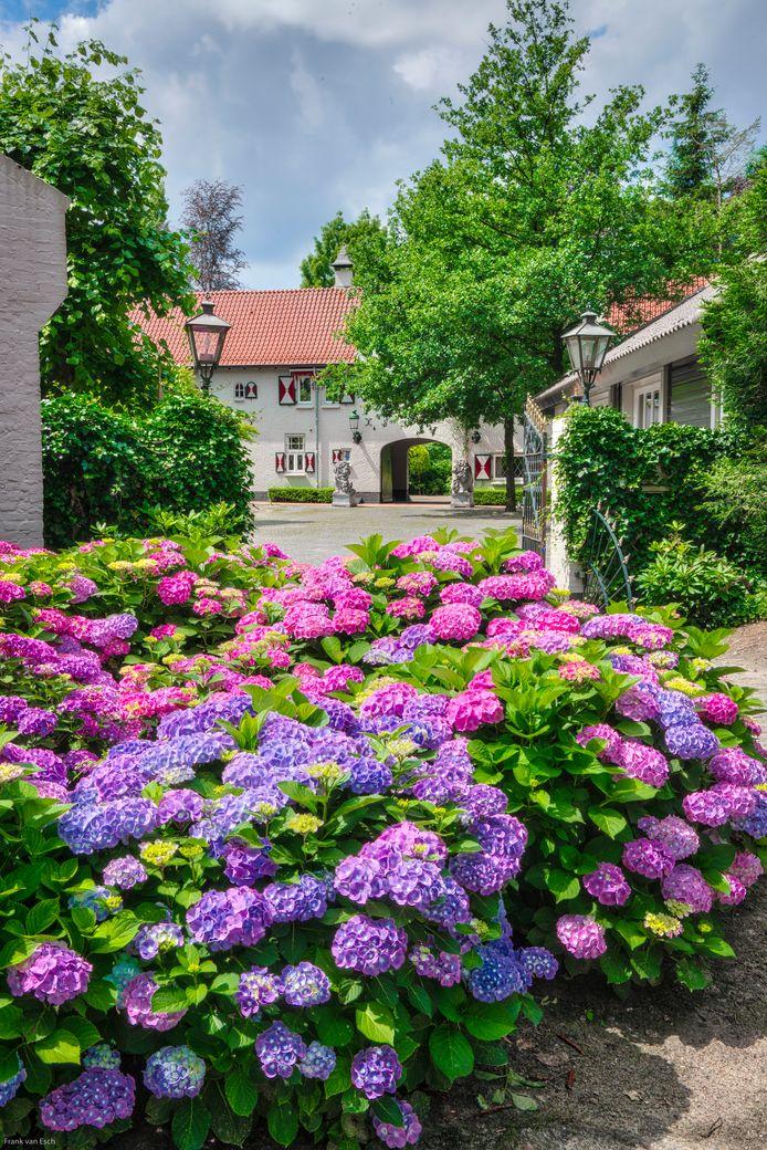 Landgoed de Hooge Braaken, tussen Oisterwijk en Moergestel