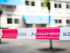 Politie zoekt getuigen van poging tot ontvoering in Terneuzen
