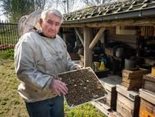 Imker Ad van Esch is bedroefd: honderden van zijn bijen liggen dood op de grond