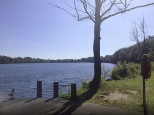 Duiker (48) verdronken in Ekerse Putten