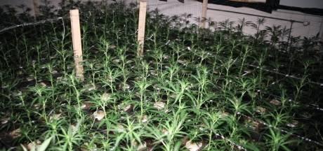 Drugspand aan Ericahof in Losser op last van burgemeester gesloten