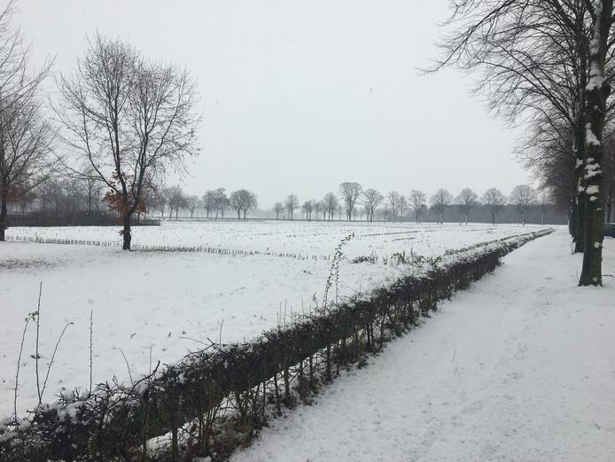 De sneeuwval is ook in Venhorst niet onopgemerkt gebleven.