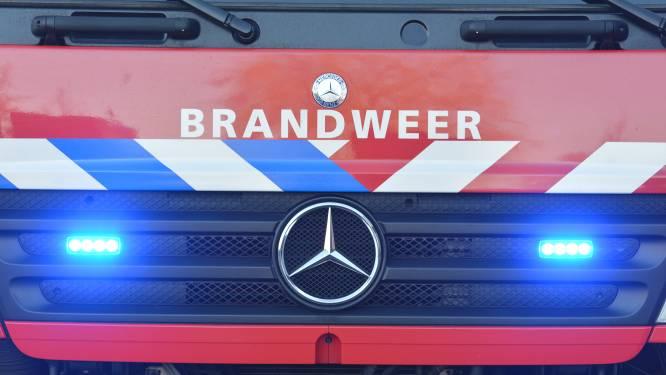 Brandweer rukt uit naar grote brand bij glashandelbedrijf in Dongen