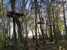 Klimbos Biesbosch Dordrecht mag open: klauteren en ziplinen kan over een week