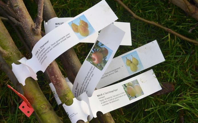Bewoners van het buitengebied in Poederoijen en Brakel kunnen deelnemen aan een beplantingsproject van  onder meer Stichting Landschapsbeheer Gelderland.