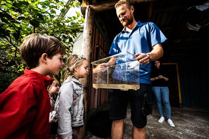 Dierenverzorger Tim toont de zelfgekweekte wenkkrabbetjes aan jonge parkbezoekers.