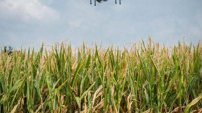 Drones meten schade aan fruitvelden