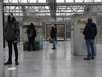 Twee eeuwen flora in Oost-Vlaanderen: expo en zoektocht in Het Leen