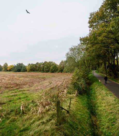 Gemeente Hengelo loopt op eieren bij keuze voor twee nieuwe standplaatsen voor woonwagens