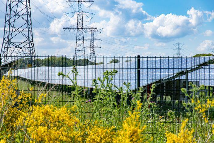 Onder voorwaarden blijft de aanleg van zonneparken in de gemeente Rheden ook de komende twee jaar mogelijk.