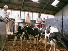 'Handen af van de Veluwe!' Vrees voor massaal wegkopen boerderijen voor stikstofrechten
